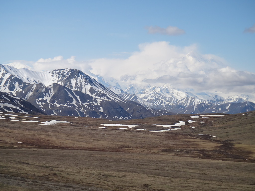 Denali Park, Alaska